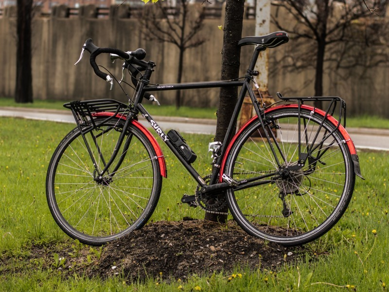 Left side view of a black Surly Cross bike, parked in a grass field against a tree