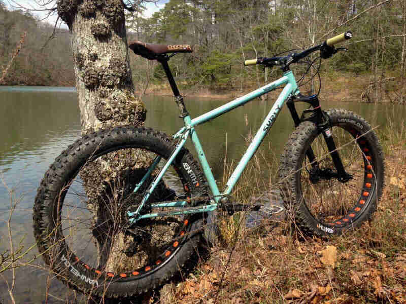 Right side view of a Surly Wednesday MY17 fat bike, mint, parked against a tree on a grassy bank of a pond in the woods