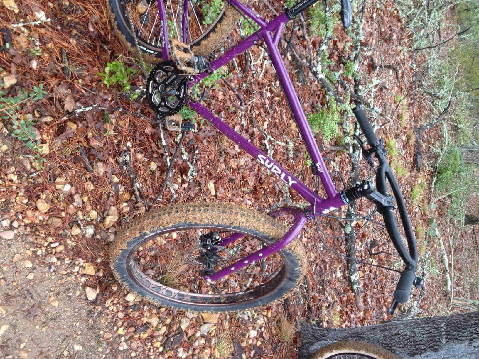 Image rotated 90 degrees clockwise - Right side view of a purple Surly Troll bike, parked on pine needles in the woods