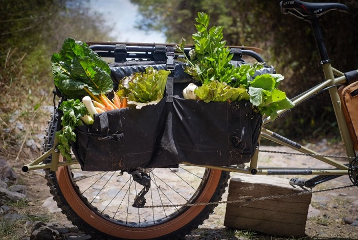 Cropped right side view of the rear end of a Surly Big Fat Dummy bike, with vegetables in the side bags