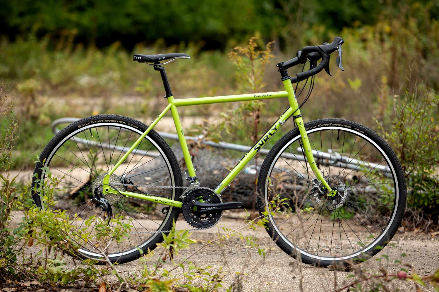 Disc Trucker bike, Pea Lime Soup